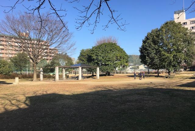 坪井中央公園広場