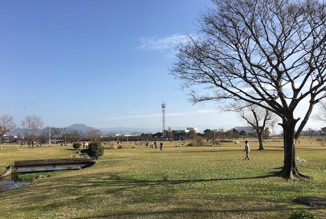 野草の広場