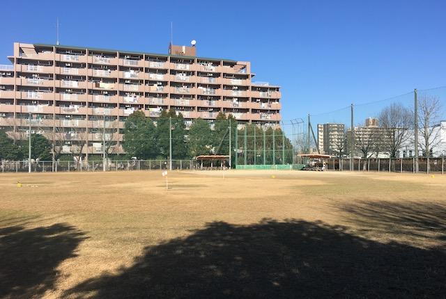 坪井中央公園
