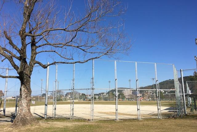 坪井川緑地公園野球場