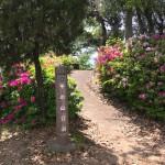 平の山公園