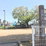 西上の前公園