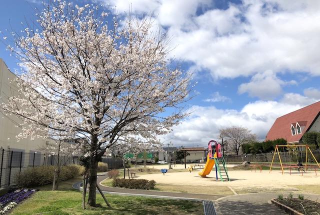 帯西むらさき公園