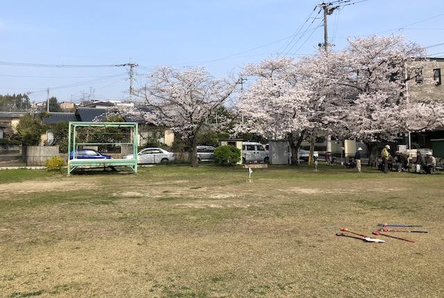 龍田陳内公園桜