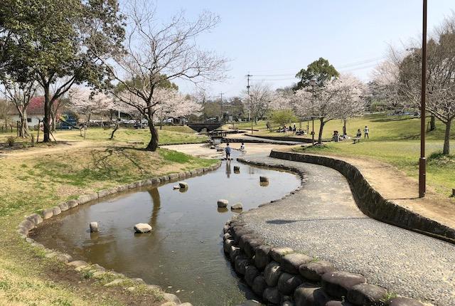 小野泉水公園水路