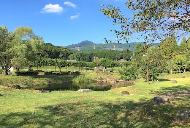 矢護川公園