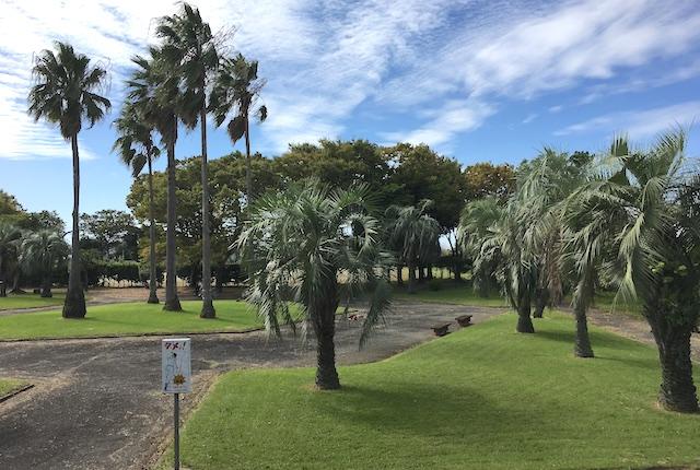 麦島東公園