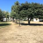 山の下公園