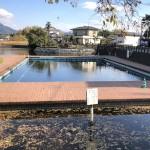 天然プール