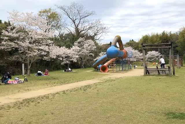 塚原古墳公園花見