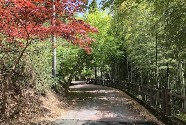 岩戸の里公園