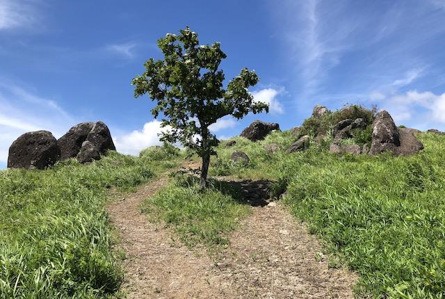 押戸石の丘石群入口
