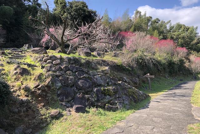 谷尾崎梅林公園階段