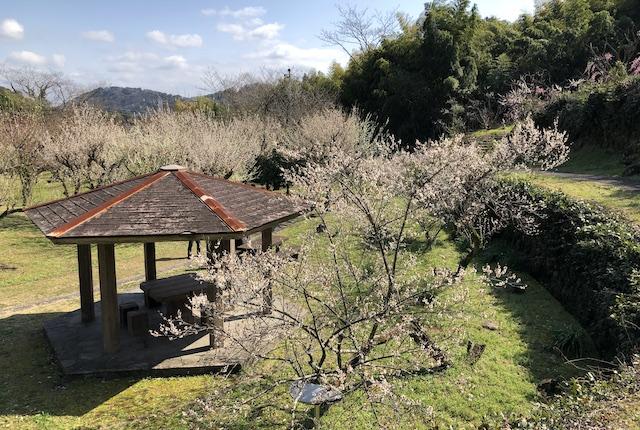 谷尾崎梅林公園東屋