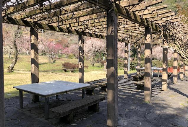 谷尾崎梅林公園パーゴラ