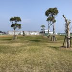 大矢崎緑地公園