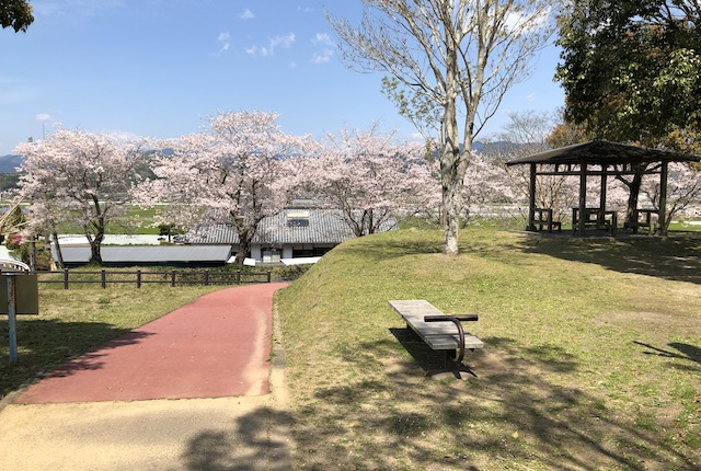 あさぎり町免田総合体育センター桜