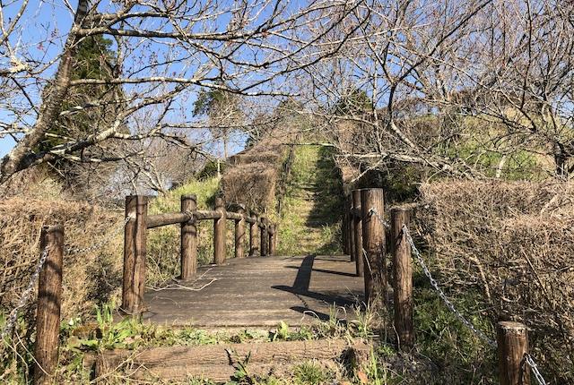 高城公園園路