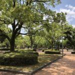 宮崎市中央公園モール