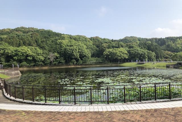 西の久保公園河内山溜池