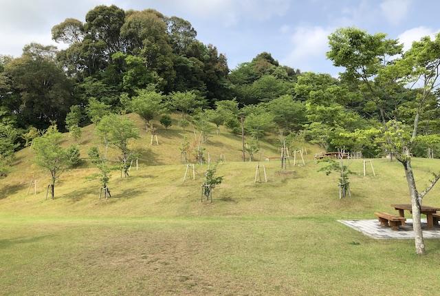 西の久保公園花見の丘