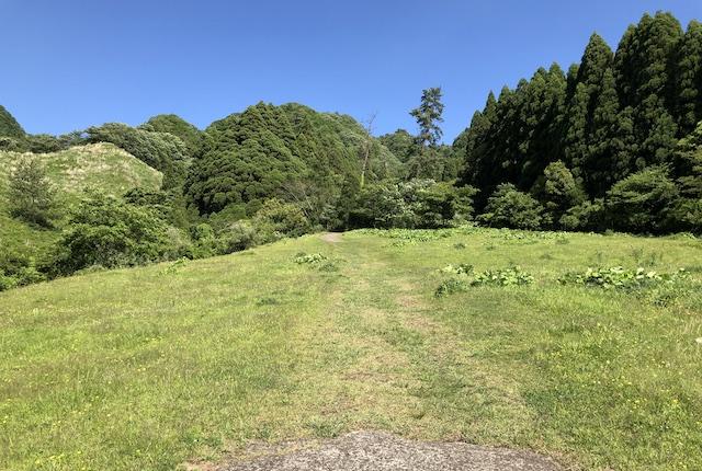 高森殿の杉牧野