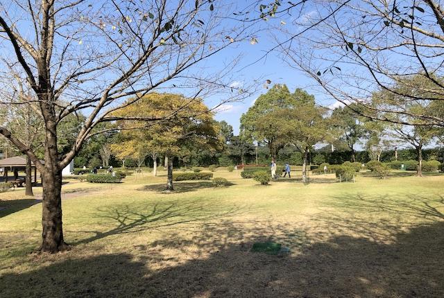 鹿児島ふれあいスポーツランド林間スポーツ広場