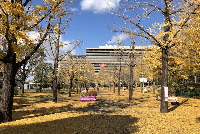 熊本県庁プロムナード